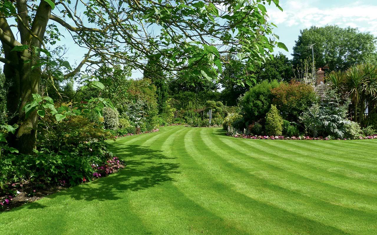 garden_lawn_4