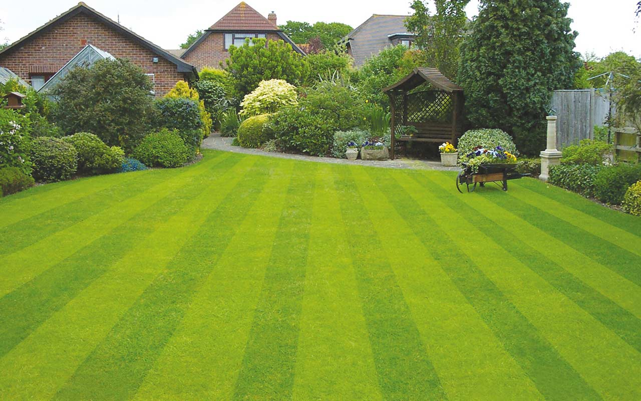 Garden design of a manicured garden lawn