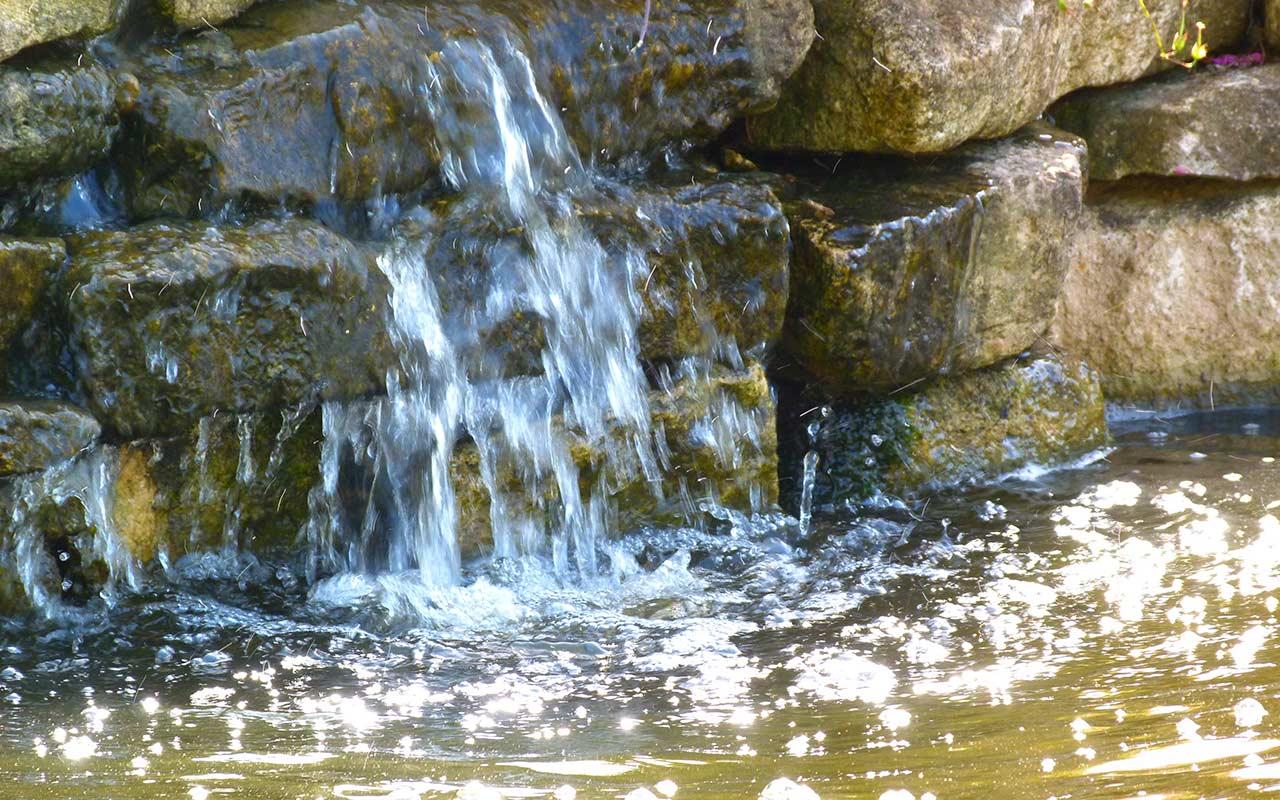 pond_maintenance_5